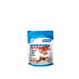 Direct 100% Whey Protein 500gr