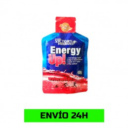 Gel Energy Up! 40gr